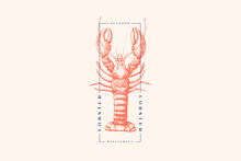 Graphically Drawn Lobster. Han...