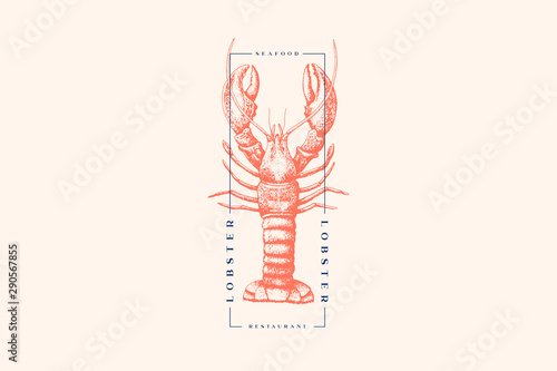 Graphically drawn lobster Canvas Print