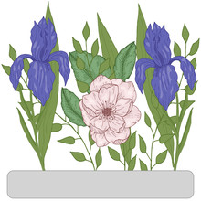 Floral Bouquet Of Hand Drawn Flowers Iris And Wild Rose With Leaves Vector Illustration