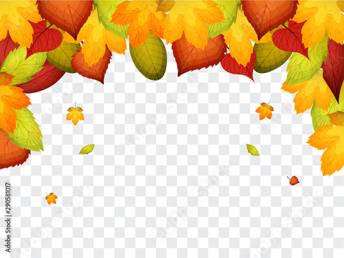 Stampa su Tela  Vector background with red, orange, brown and yellow falling autumn leaves
