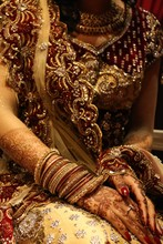Person In Brown And Red Sari Dress