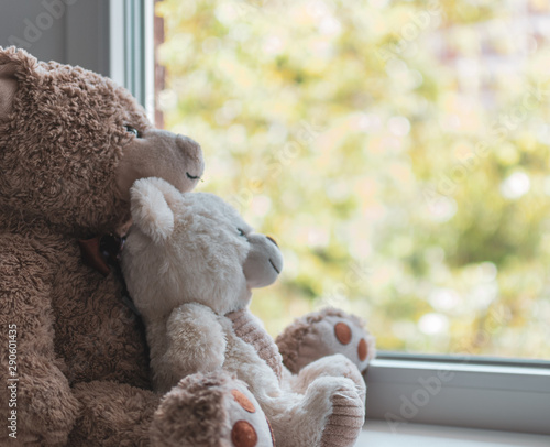 Two cuddled teddy bears hugging looking out a window