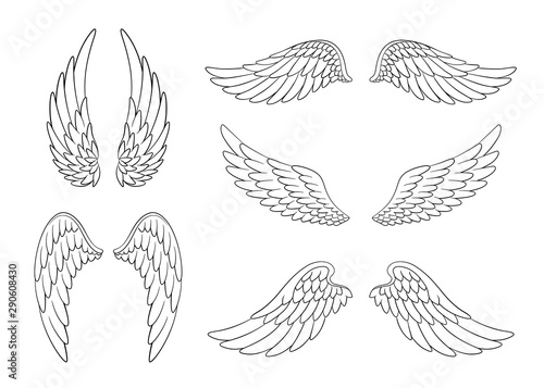 Fototapeta Set of hand drawn bird or angel wings of different shape in open position. Contoured doodle wings set obraz