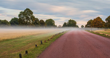 Early Morning Fog Settling Into The Richmond Park In London