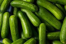 Raw Green Organic Mini Cocktail Cucumbers