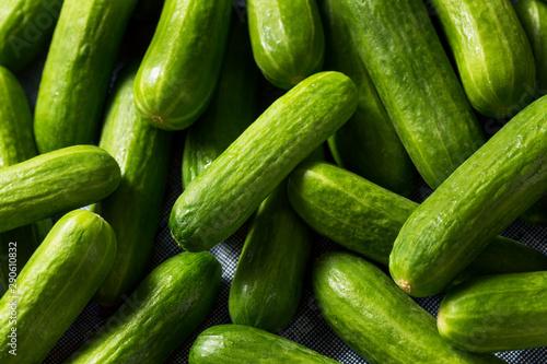 Raw Green Organic Mini Cocktail Cucumbers Wallpaper Mural