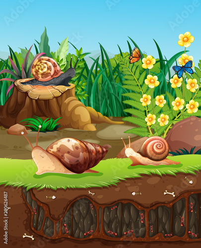 Poster Kids Nature scene with snails crawling in garden