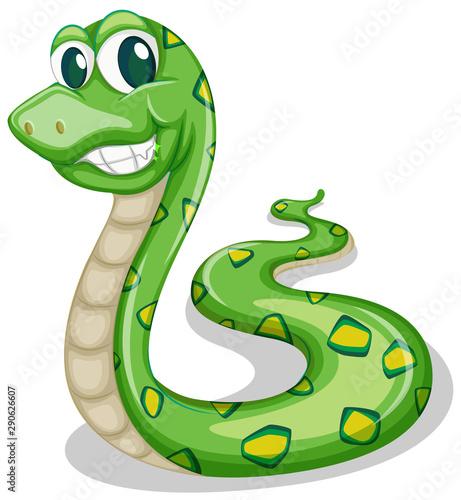 Poster Kids Green snake on white background