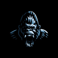Head Of An Angry Gorilla.
