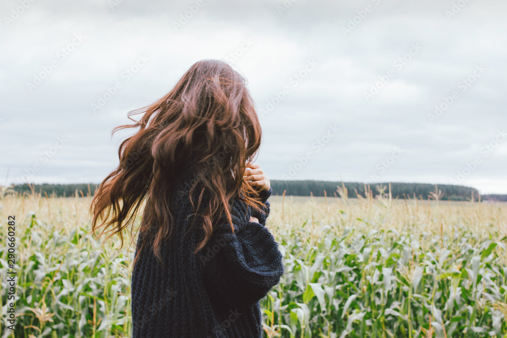 Fototapeta Beautiful carefree windy long hair girl in knitted sweater in the autumn corn field. Sensitivity to nature concept