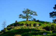 Hobbit House At The Hobbiton M...