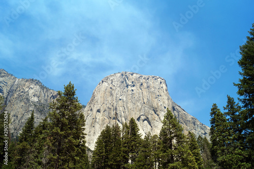 Yosemite valley mountains and forest Wallpaper Mural