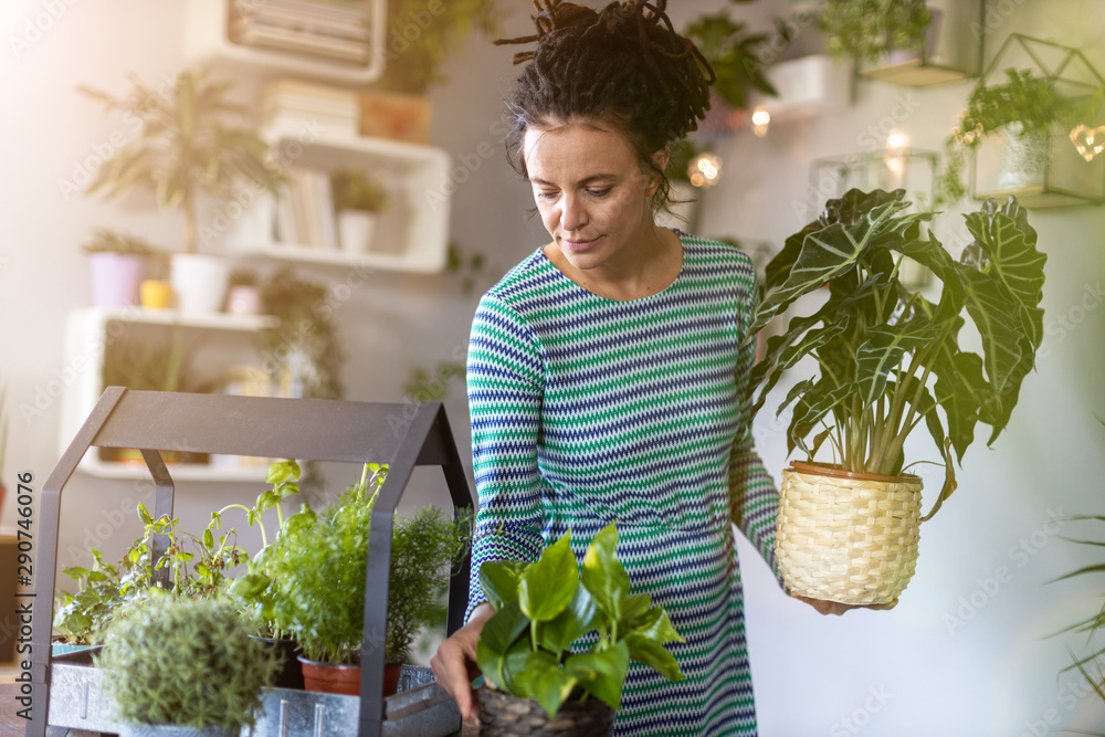 Fototapety, obrazy: Young woman taking care of her potted plants at home