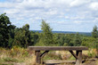 Woodland bench with countryside views