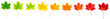 canvas print picture - bunte Ahornblätter liegen auf weißem Hintergrund, Vorderseite, Freisteller