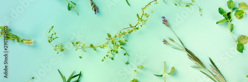 Obraz A panorama of the herbs of Provence. Thyme, oregano, lavender, shot from the top on a blue background in a flat lay pattern, toned image - fototapety do salonu