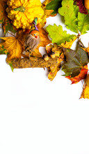 Autumn Thanksgiving Background,Mockup For Seasonal Offers And Holiday Post Card, Top View