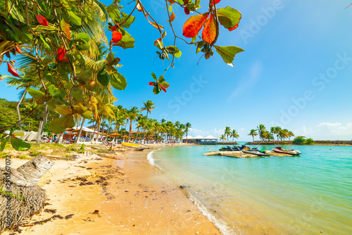 Turquoise sea in Bas du Fort beach in Guadeloupe