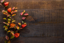 Branches With Small Colorful Autumn Leaves (Spiraea Vanhouttei)  And  Fruit Of  Physalis On The Dark Wooden Table. Autumn Composition.