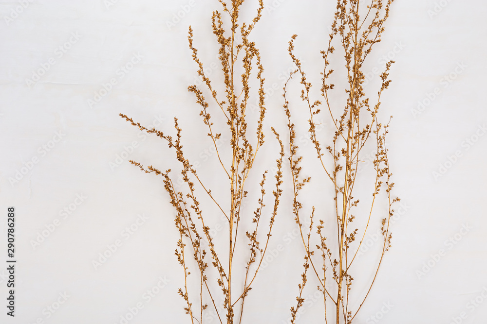 Fototapeta Autumn composition. Gold spray painted natural branches of plants or grass on white background. Flat lay, top view, copy space. Minimal concept