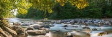 Natur Panorama Am Fluss Im Wald