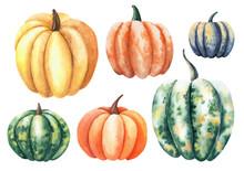 Set Of Pumpkins. Watercolor Is...
