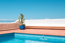 Outdoor Swimming Pool With Empty Bench ,cactus In Pot Clear Blue Sky Background
