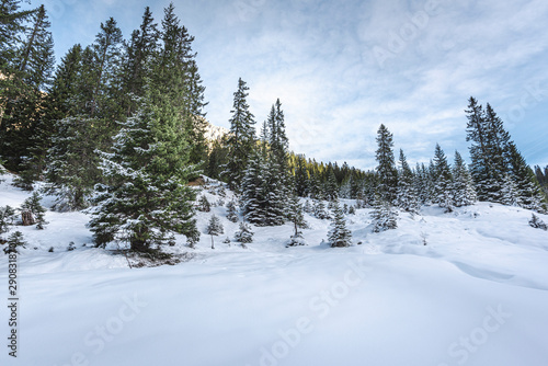Fotobehang Fresh white snow in the Austrian Alps. Snowy trees and snowdrifts