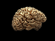 Golden Human Brain On Black Background