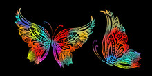 Colorful Butterfly Of Patterns. Vector Illustration