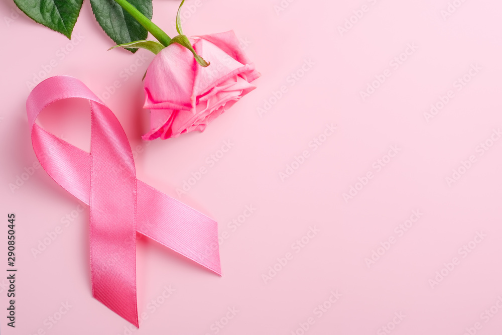 Fototapety, obrazy: Pink ribbon and rose on a pink background. Breast Cancer Awareness Month