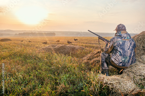 Poster Chasse Hunter in camouflage with a gun hunting on black grouse. Hunting for game birds. Hunters open season in autumn.