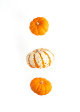 Flying Pumpkin Isolated On White Background. Thanksgiving Traditional Bright Orange Pumpkin.