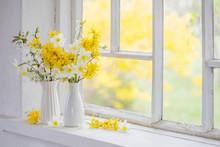 Yellow Spring Flowers On Windowsill