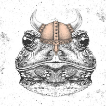 Hipster Animal Frog Wearing A Viking Helmet. Hand Drawing Muzzle Of Frog