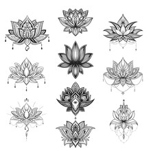 Filigree Lotus Flower Set, Vec...