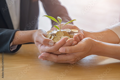 Valokuvatapetti Businessmen teamwork hands with trees growth up on coin to profit investment mutual fund finance and business