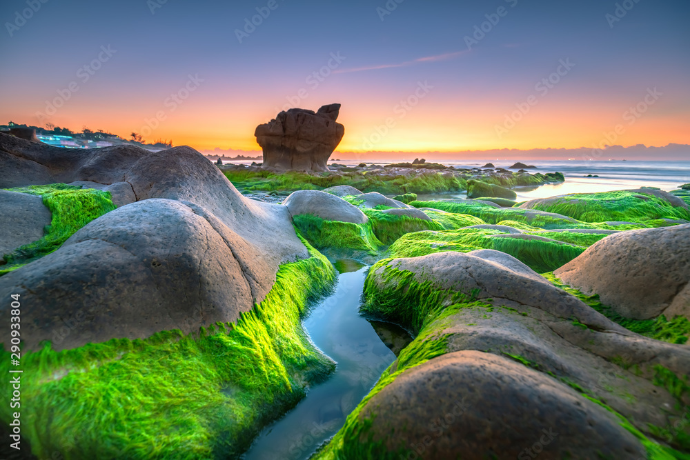 Fototapety, obrazy: Strange stones covered moss and seaweed welcomes dawn  beautiful new day