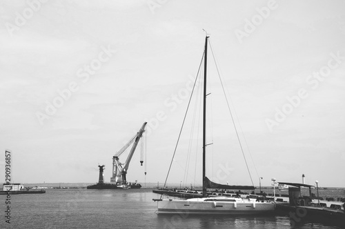 Foto auf Acrylglas Schwan Harbor with sailboats and yachts moored in the port.