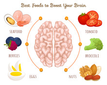 The Best Food For A Healthy Brain And Good Memory. A Set Of Products Useful For The Mind. Vector Infographics. Diet For The Brain. Information Banner.
