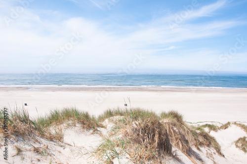 Fotografie, Obraz Beautiful coastline of west coast Blaavand, Denmark in the summer
