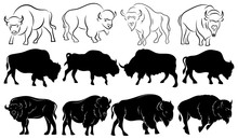 Set Of Bison. Collection Of Stylized Bison Silhouettes. Black And White Illustration Of A Large Horned Animal. Tattoo.