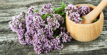 Oregano Flowers, Wooden Mortar And Bunch Of Wild Marjoram Buds On Old Textured Rustic Wooden Background, Closeup, Copy Space, Alternative Medicine And Naturopathy Concept
