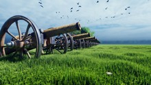 Medieval Cannon In A Field In ...