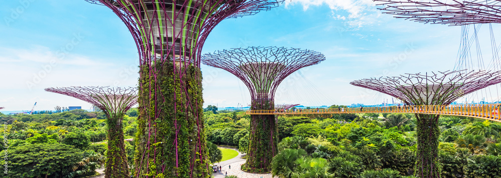 Fototapety, obrazy: Supertree grove in garden by the bay, Singapore.