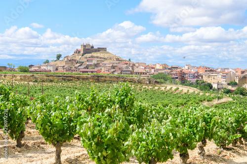 beautiful town of la rioja, Spain