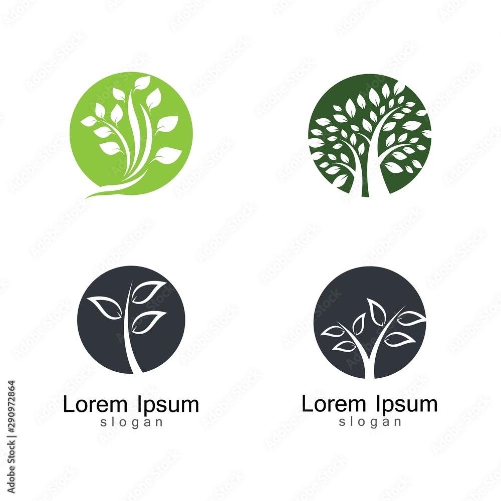 Fototapety, obrazy: Tree logo template vector icon