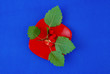 canvas print picture - red berries on red plate  with leaves on blue background