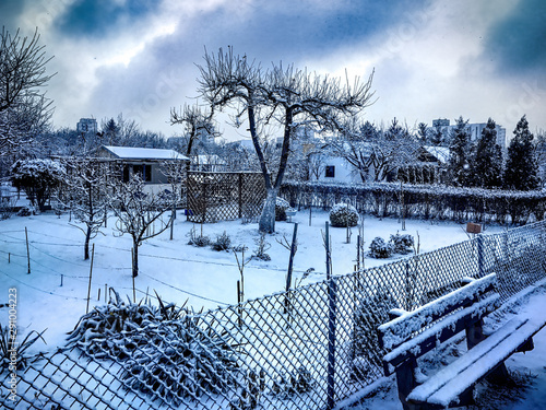 Photo Allotments in the snowy winter