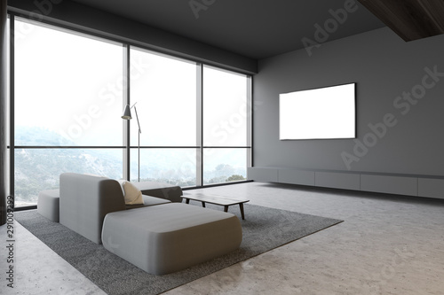 Photo Gray living room with mock up TV and sofa